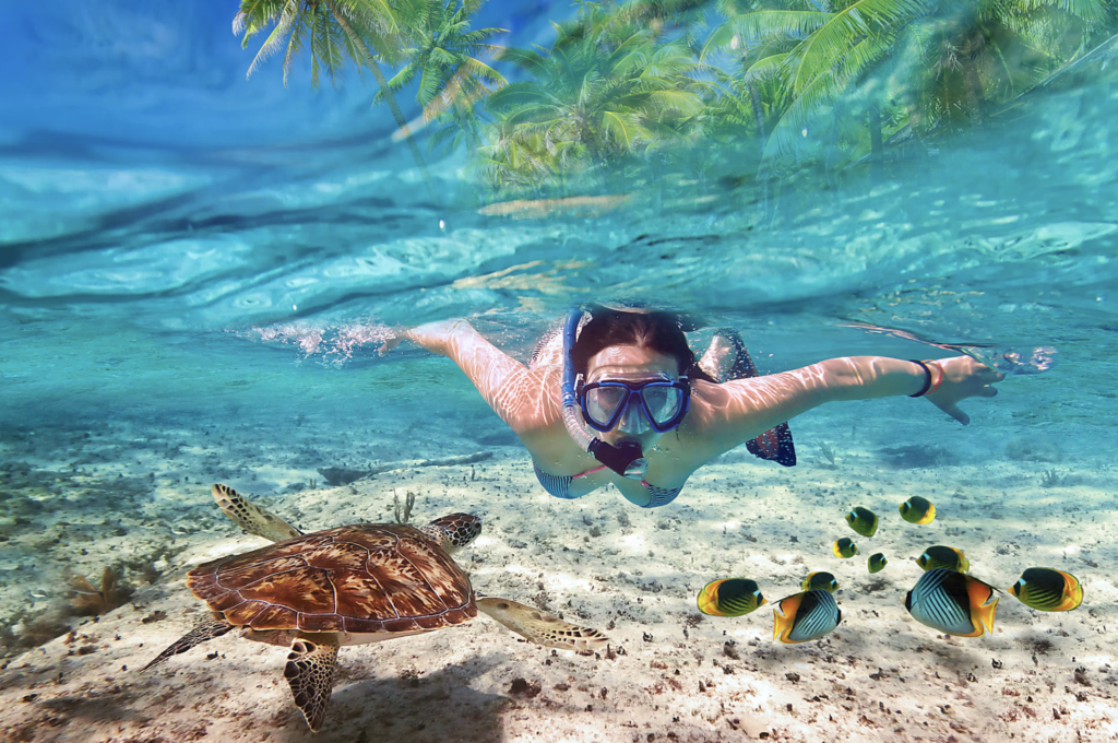 Snorkel through the crystal clear waters at Cabeza de Toro
