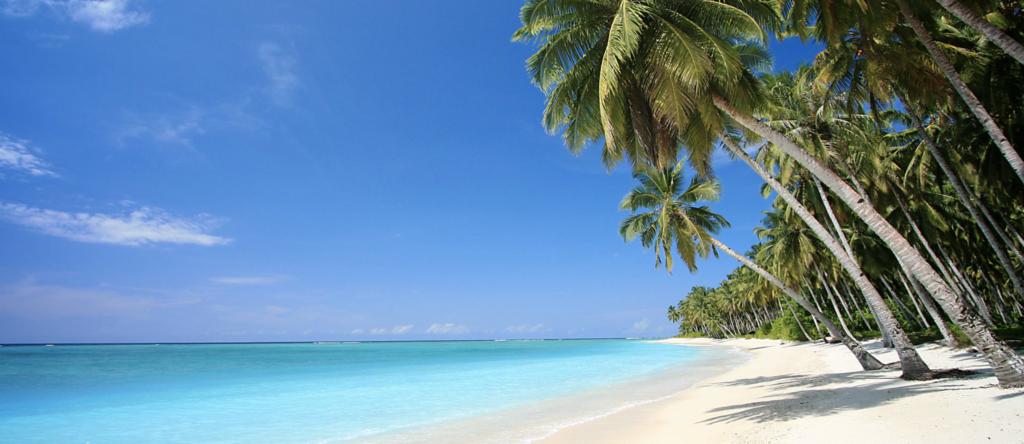 Playa Blanca, a piece of paradise in Punta Cana